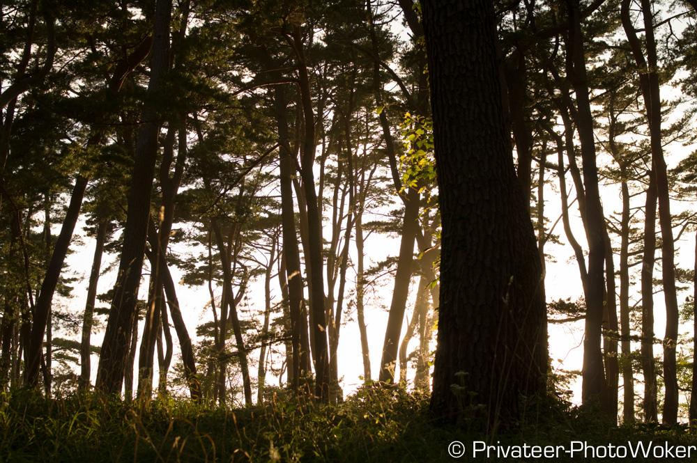碁石海岸キャンプ場