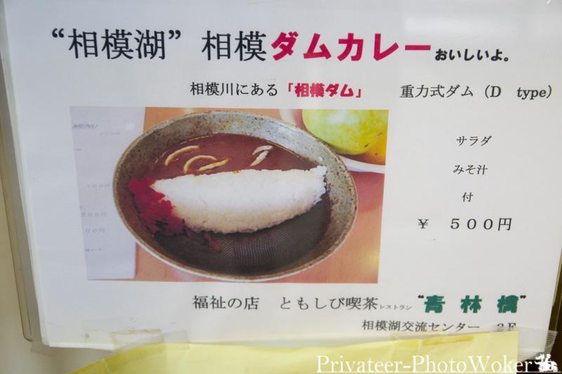 ともしび喫茶 青林檎 相模ダムカレー