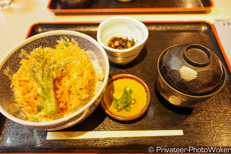 江ノ島 かき揚げしらす丼
