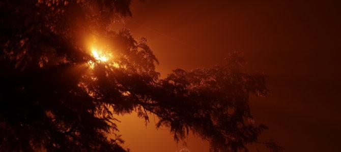 ホワイトバランスCTE全開! 箱根 濃霧の宮ノ下で夜の町歩きしてきた