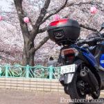 2019恩田川桜祭りトリシティ155