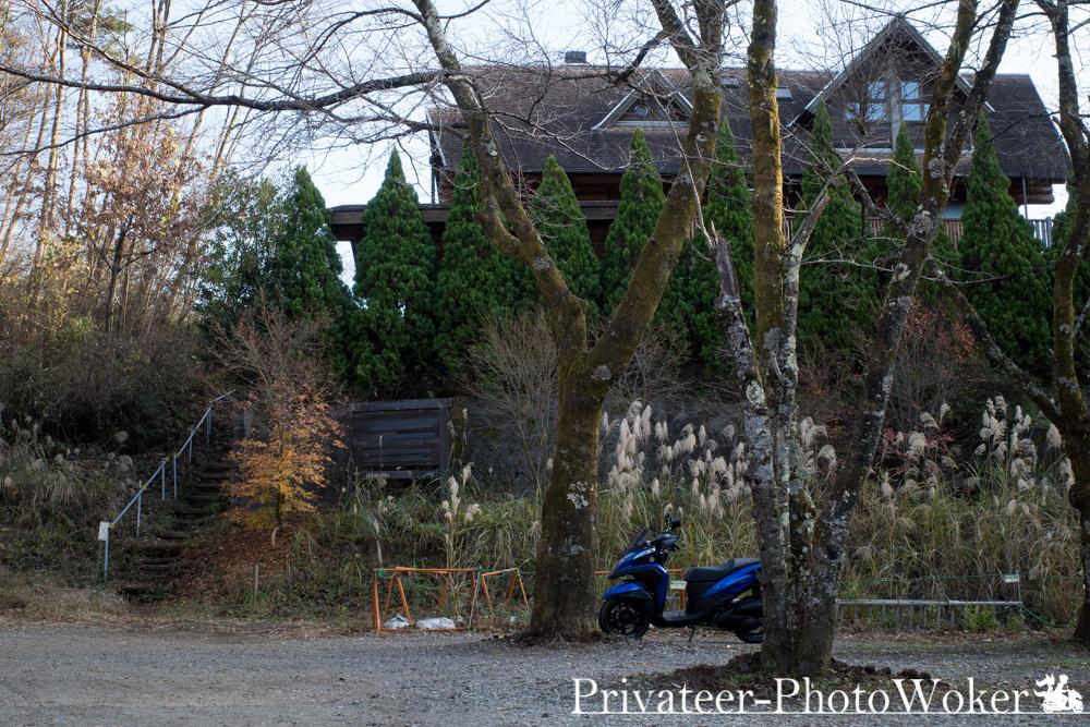 オレンジツリー 駐車場